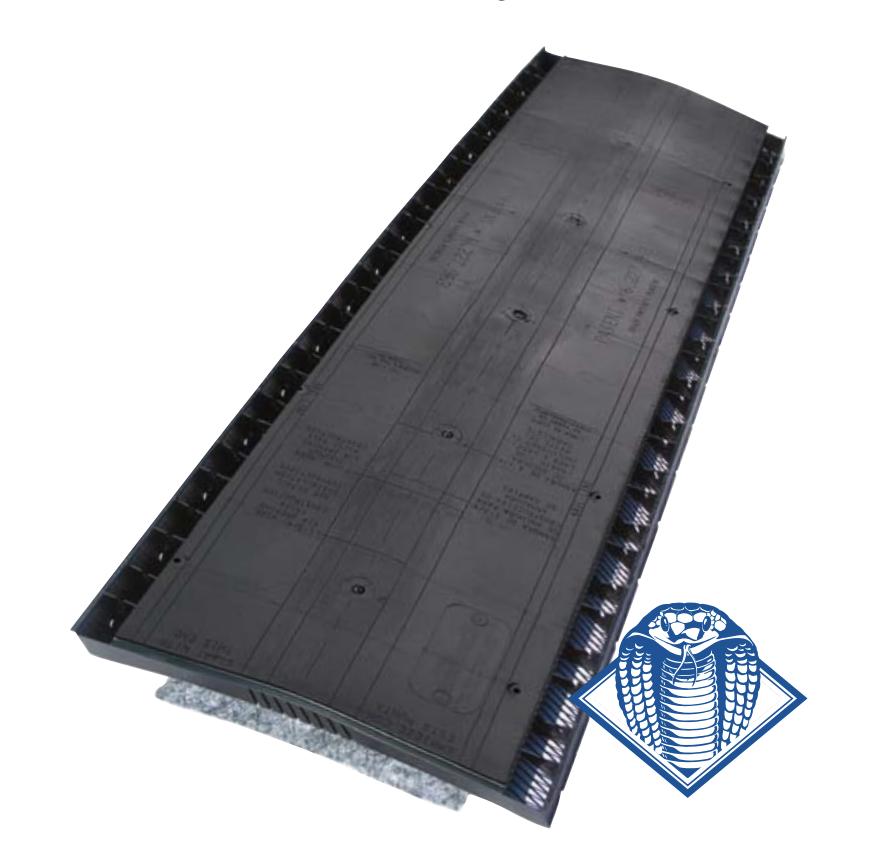ridge ventilation product used in Colorado